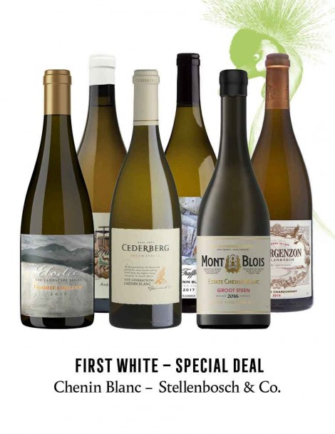 KapWeine - SPECIAL DEAL - 7176 FIRST CHENIN BLANC STELLENBOSCH & CO SET 2020
