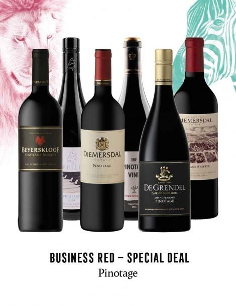 KapWeine - Special Deal - 7296 BUSINESS PINOTAGE SET 2020