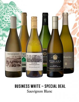KapWeine - Special Deal - 7306 BUSINESS SAUVIGNON BLANC SET 2020