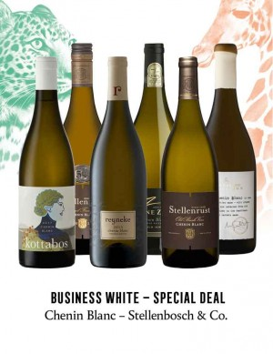 - KapWeine - Special Deal - 7450 BUSINESS CHENIN BLANC STELLENBOSCH & CO SET 2020 -