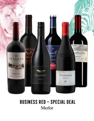 KapWeine - Special Deal - 7299 BUSINESS MERLOT SET 2020