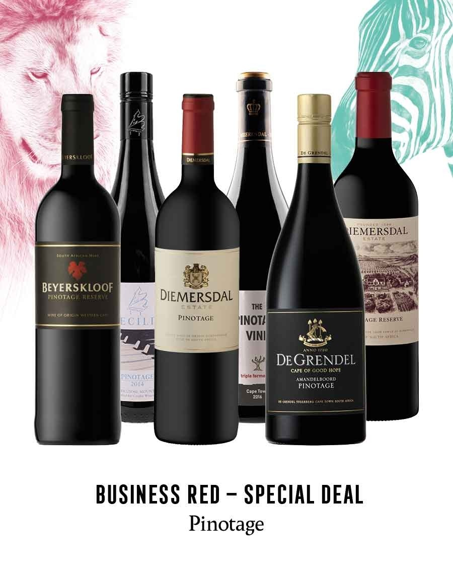 KapWeine - Special Deal - 7296 BUSINESS PINOTAGE SET 2020
